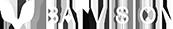 BATVISION Logo